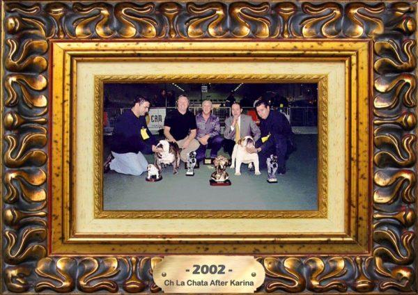 BOY 2002